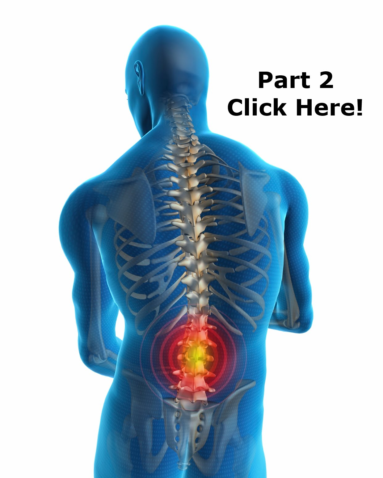 https://www.facebook.com/notes/atr-sports-therapy-the-sports-injury-clinic/2-low-back-pain-the-myths-potential-causes-and-key-concepts-in-its-treatment/727686940631857